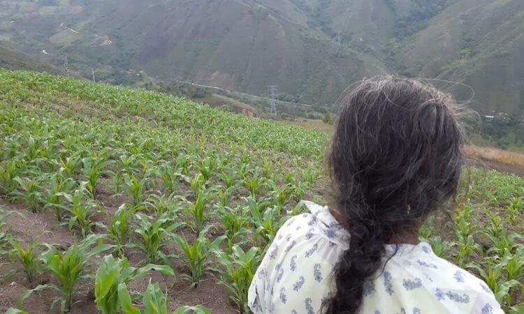 Moradores de vilas distantes são visitados por pastores durante a quarentena e se entregam a Cristo